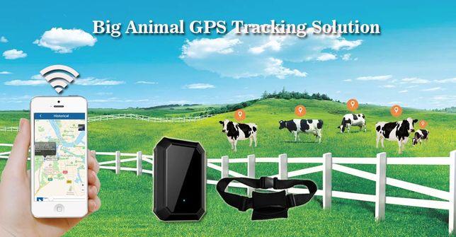 GPS трекер - ошейник для крупных животных с солнечными панелями.