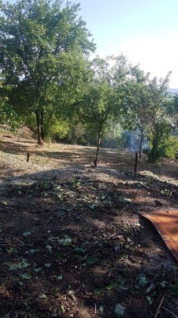 Defrișări..curatam terenuri sau grădini sau spati verzi îngrijim