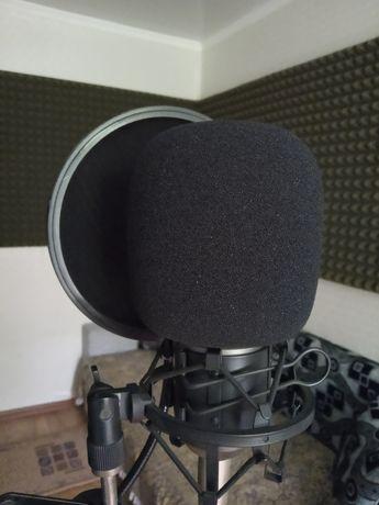 Студия звукозаписи / Запись голоса
