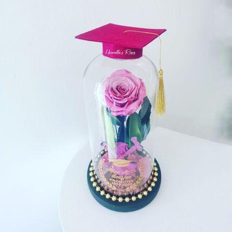 Trandafiri criogenati in cupola de sticlă