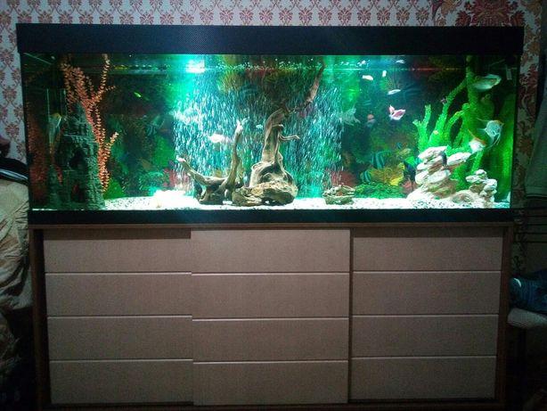 Продам аквариум 600 литров