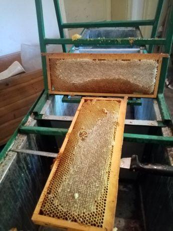 Мед от Врачанския балкан.