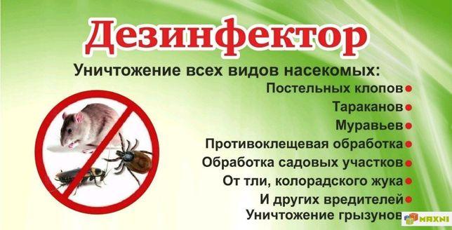 Дезинфекция!!! Нас РЕКОМЕНДУЮТ/ Гарантия 100%