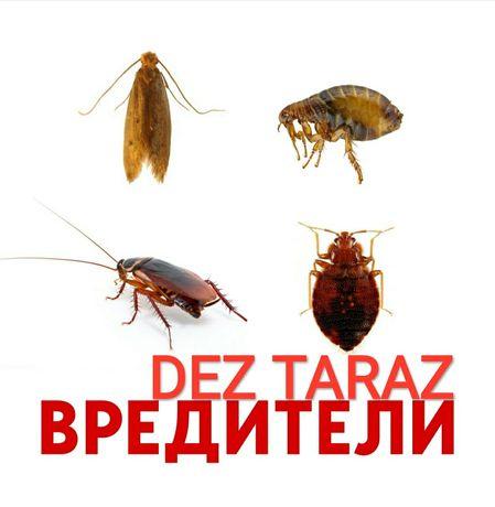 СЭС дезинфекции гарантия
