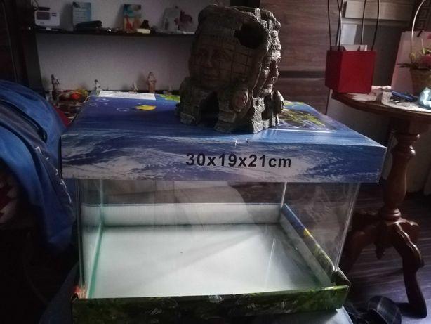 Acvariu 12 litri și decor acvariu