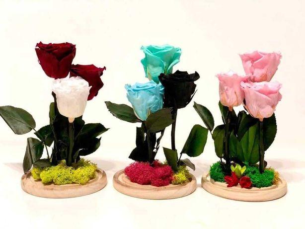 Florarie online trandafiri criogenati-livrare gratuita Bucuresti