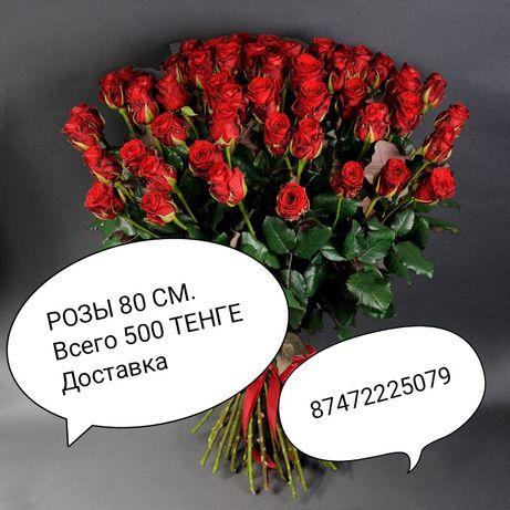 Красные розы 80 см.