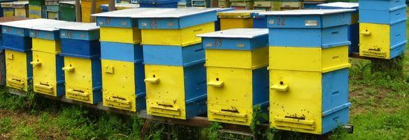 Кошери и пчелни рамки