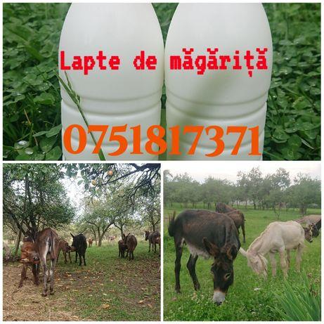 Lapte de magarita