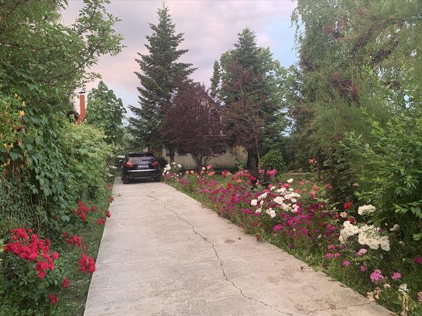 Vand casa/vila cu teren Domnesti/Ilfov