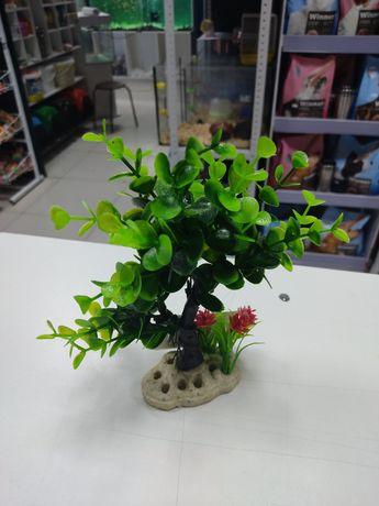 Растение для аквариума, аквадекор для аквариума