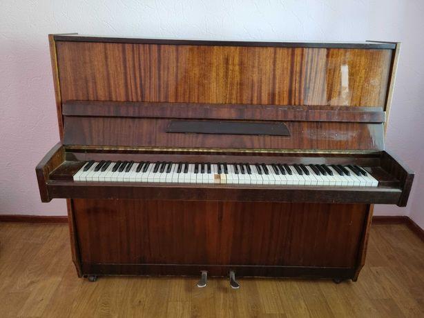 Пианино 《Аккорд》