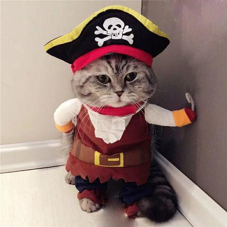 Costum Pirat - Haine accesorii pisici / caini /