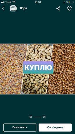Пшеницу берем для себя