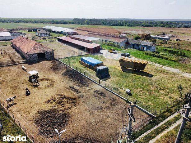 Ferma Agrozootehnica de vânzare -  Comuna Pecineaga, Constanta