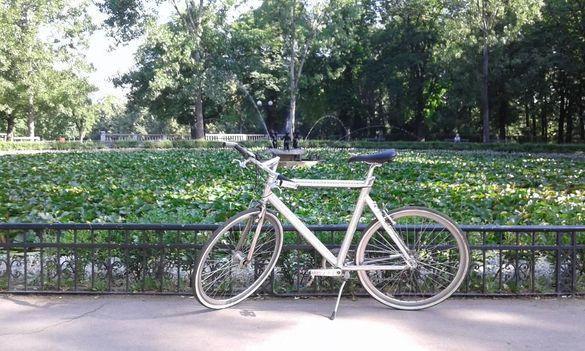 Велосипед-Avenue
