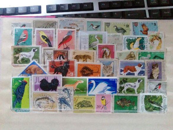 Продавам Колекция От Пощенски Марки