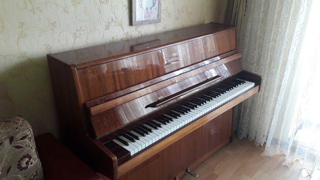 Элитное немецкое пианино Циммерман