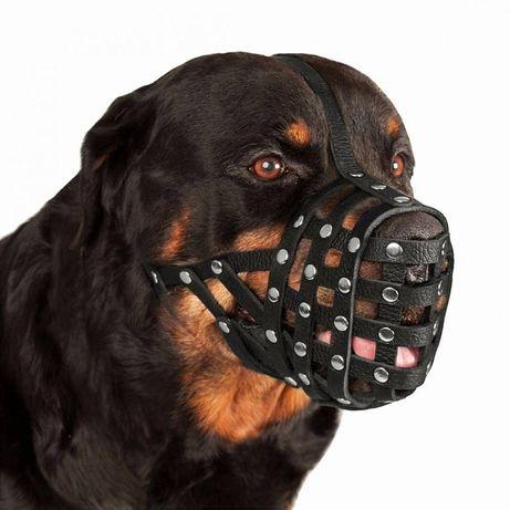 Продам намордник для собаки крупной породы.