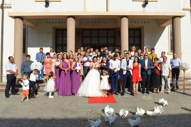 Închiriez porumbei albi pt nunti Tulces