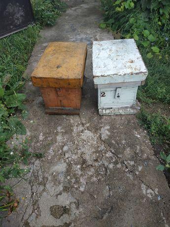 Продается пустые рамки , маклеусы для пчеловодства