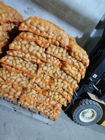 Cartofi consum Carrera