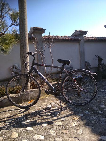 Велосипед с. Сбор - image 1