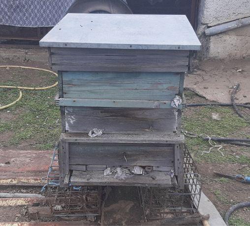 Пчелни кошери