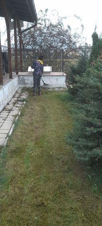 Tăiere copaci defrisari debarasare locuințe avem personal calificat