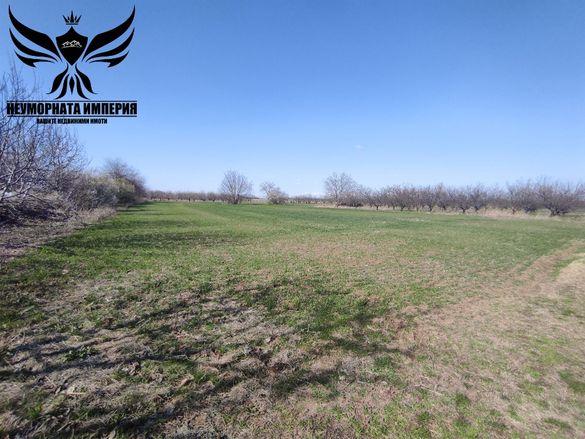 Продавам земя 1806кв.м. първа линия с.Браниполе обл.Пловдив