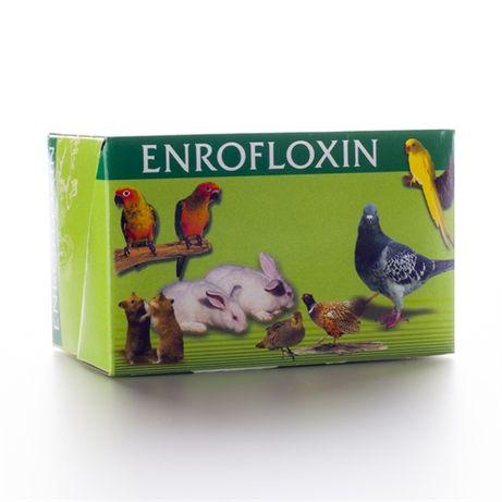 Енрофлоксин-антимикробно действие за кучета,котки,гълъби