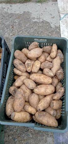 Vand cartof