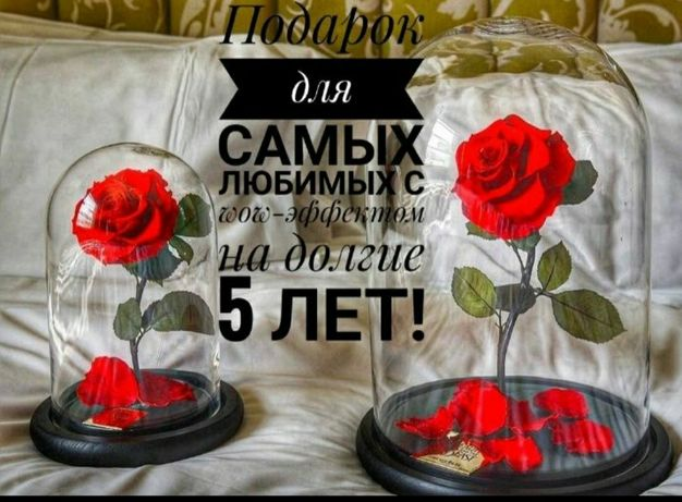 Роза в колбе. Оригинал. Подарок. Маме, девушке, жене,  сестре!