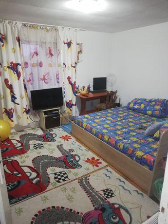Casa de vânzare Sânmihaiu Român (direct de la proprietar)