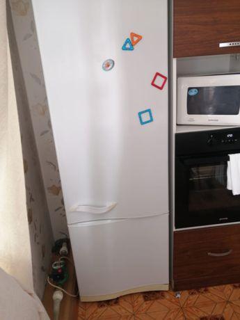 Золодильник
