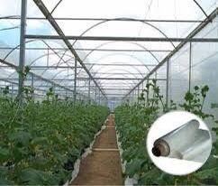 Folie solar aditivata UV+EVA+AF+AD+IR, 21 lei/kg, 5 Sezoane, Grecia