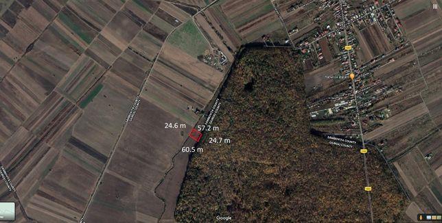 Vand teren 1450 mp la marginea padurii Cereanca (Gulia) 8 €/mp
