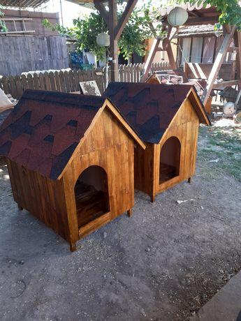 Custi  de câini din lemn de brad.