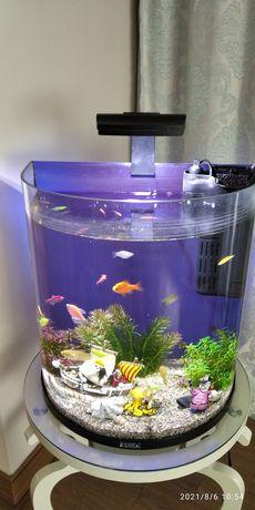 Обслуживания аквариумов