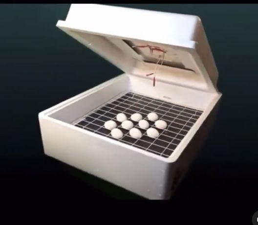 Инкубатор для яиц алматы автоматический инкубатор купить
