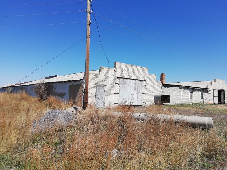 Продам ферму (базы) под разведение птицы, КРС, овец Юбилейное - изображение 1
