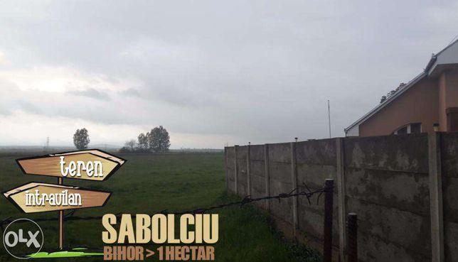 Teren intravilan aproape de Oradea