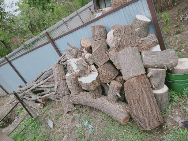 Продам дрова! Карагач!