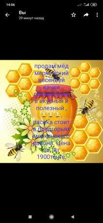 Продам Меркенский мёд!!!