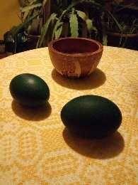 Oua de struț Emu