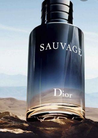 Sauvage Dior ; D&G
