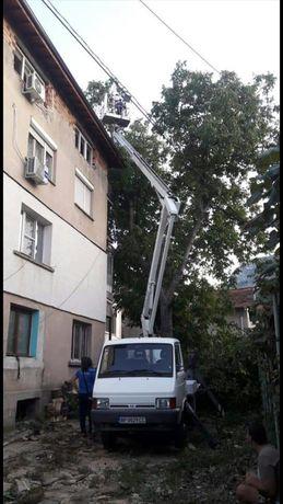 Рязане; кастрене; премахване на опасни дървета с автовишка ( вишка )!