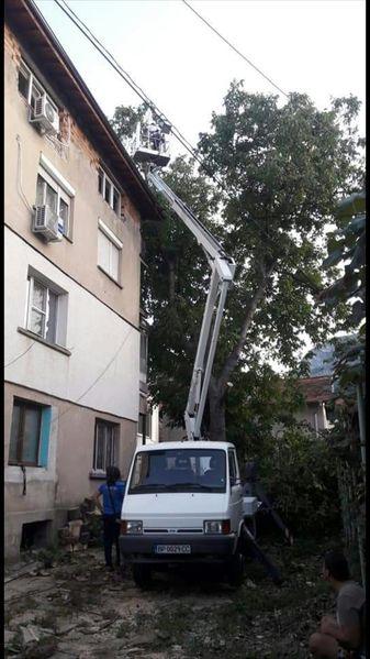 Рязане; кастрене; премахване на опасни дървета с автовишка ( вишка )! гр. Враца - image 1