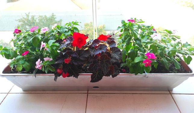 Vând jardinieră cu flori