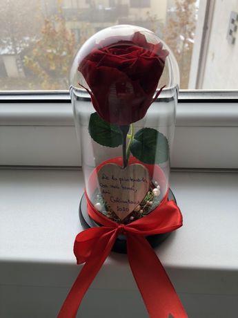 Cupola cu trandafir rosu criogenat